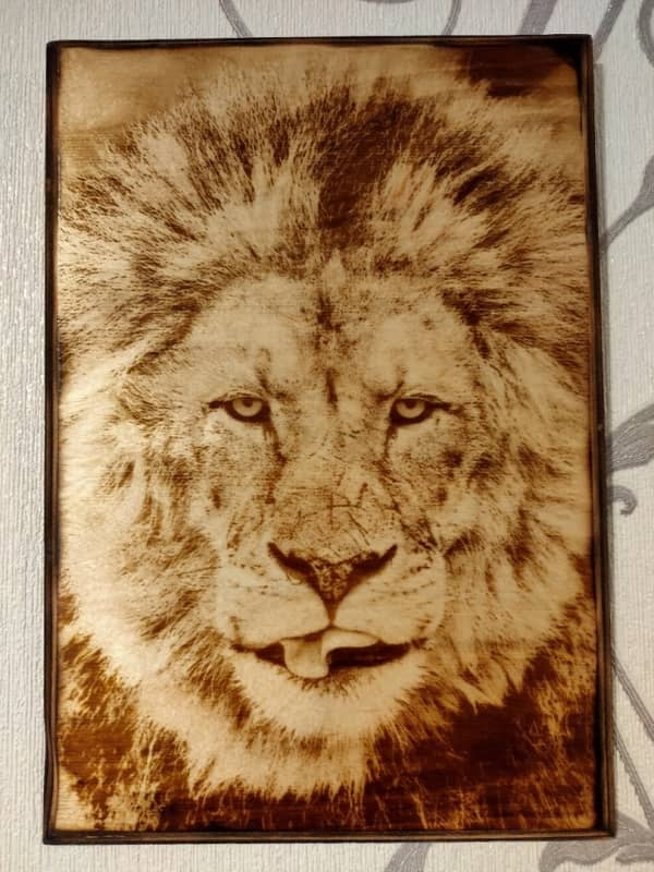 wood burned picture lion