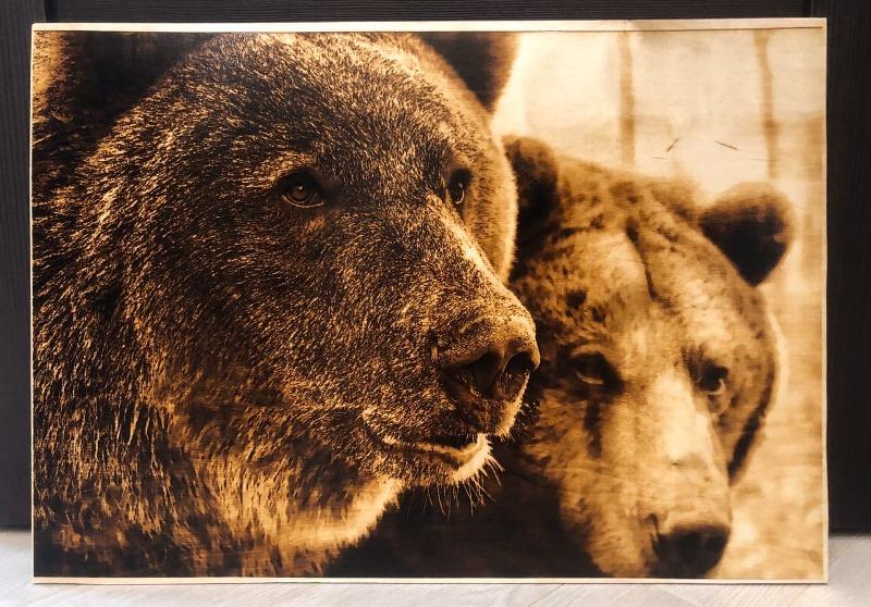 bears burned on wood