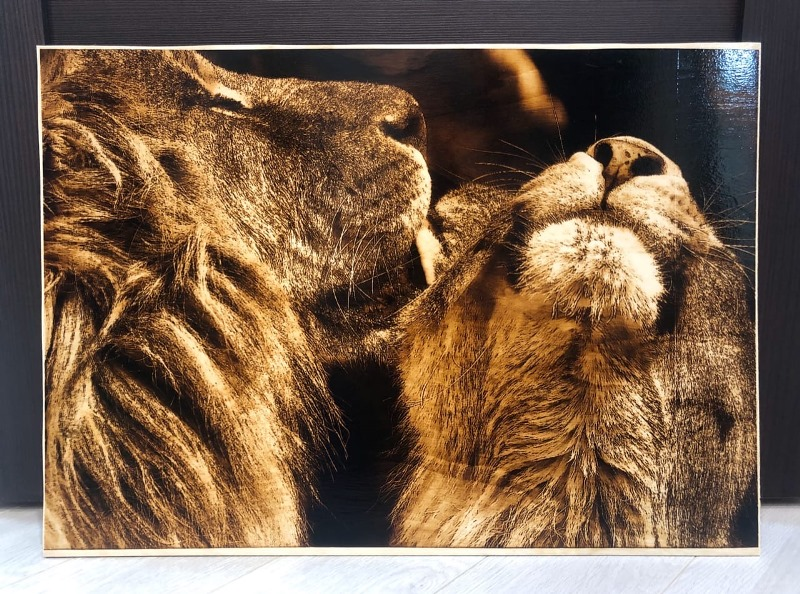 lions pyrography