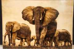 elephants wood burning